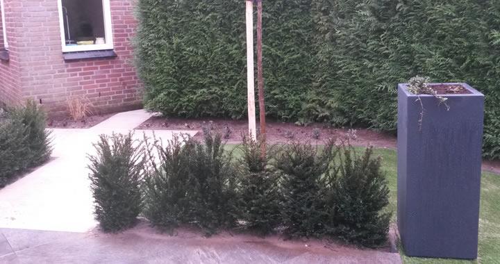 Voor en achtertuin project escharen